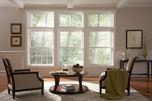 Double Hung Windows Home Window Deals Replacement